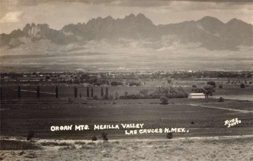 NEW MEXICO Las Cruces Valley Organ Mts. RPPC