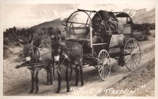 Nevada Donkey-Drawn Wagon on Road RPPC