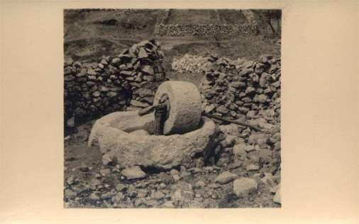 Palestine Israel Grinding Stone RPPC