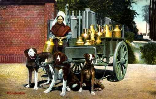 Dog-Drawn Milk Cart