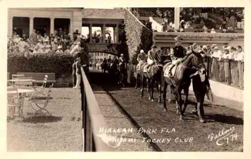 FL Miami Jockey on the Horses RP