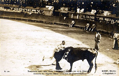 Mexico Bull Fighting Real Photo