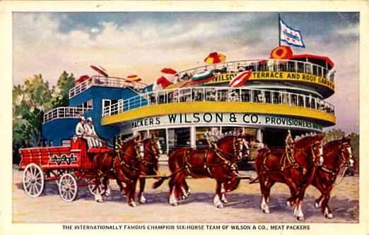 Wilson Meat Packers Horse Team