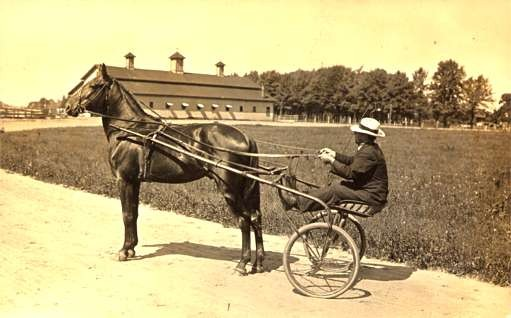 Harness Racer Field Barn Real Photo