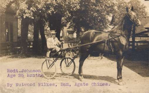 Harness Racer Real Photo