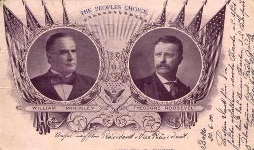President Vice-President Roosevelt McKinley Vote