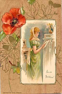 Lady Poppy Flower