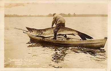 Fish Exaggeration Fisherman RP
