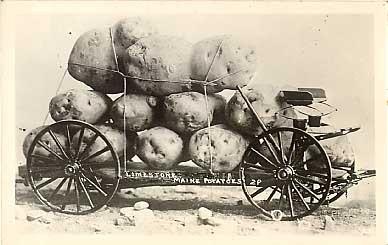 Exaggeration Maine Potatoes RP