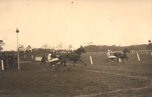 Harness Racers Real Photo