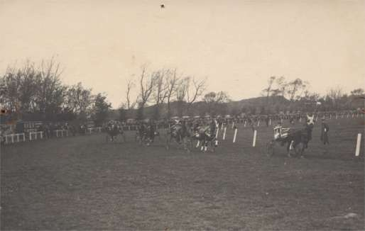 Harness Racers in Field Real Photo