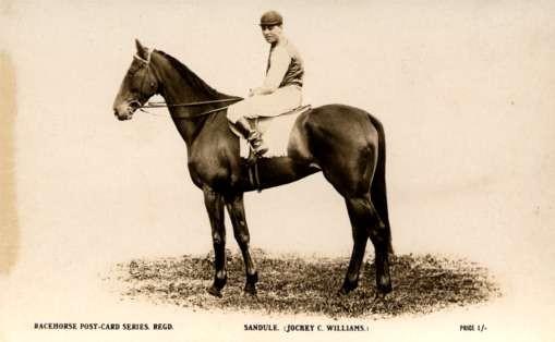 Jockey Looking Forward Horse Real Photo