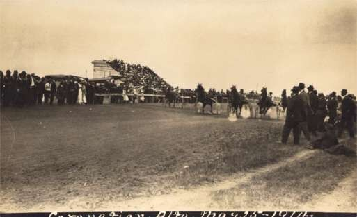 Harness Horse Race Real Photo