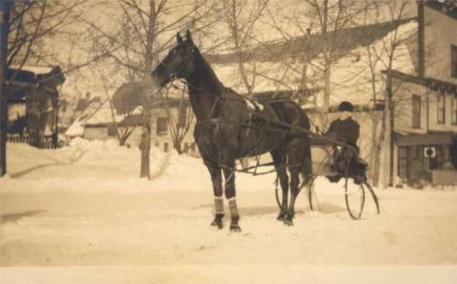 Harness Racer in Snow Winter Real Photo