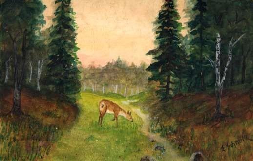 Deer in Woods Hand-Drawn