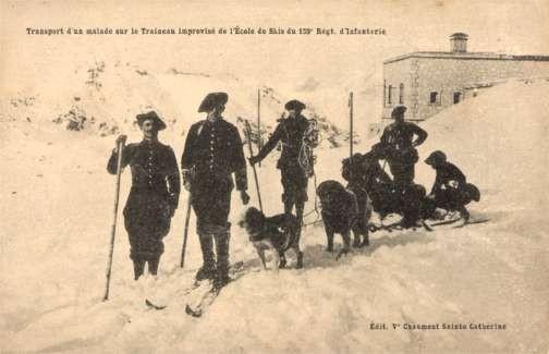 Dog-Drawn Sled Militay on Ski Red Cross