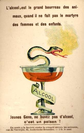 Snake in Alcohol Glass