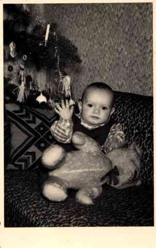 Teddy Bear by Christmas Tree Real Photo