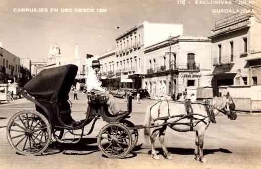 Horse-Drawn Wagon Auto Real Photo