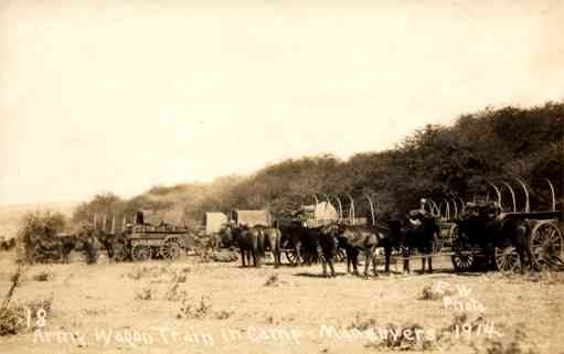 Hawaii Horse-Drawn Carriage Real Photo