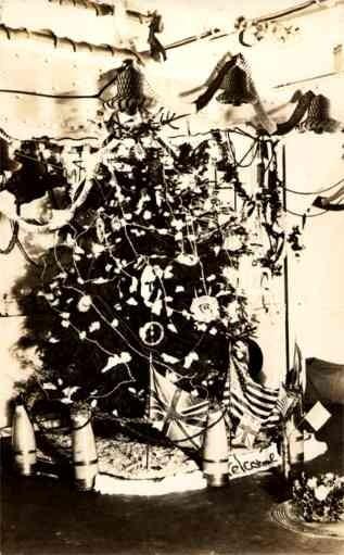 Christmas Tree Real Photo