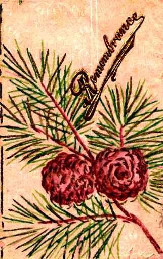 Pine Tree Hand-Painted British
