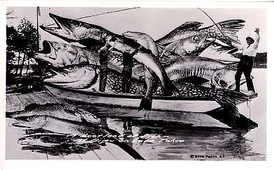 Boat Fish Exaggeration RP CA