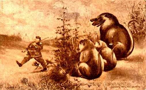 Possums Hunting Dog NYC Political