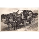 Nevada Donkey-Drawn Wagon on Road RPPC