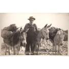 Nevada Desert Loaded Donkeys RPPC