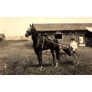 Harness Racer by Barn RP