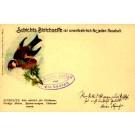Stieglitz Bird