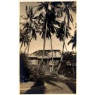 Hawaii Palms Cottage Real Photo
