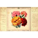 Silk Carnations Novelty