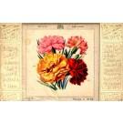 Silk Carnations Novelty