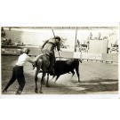 Mexican Bull-Fighting Real Photo