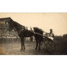 Harness Racer Hasse Tokyo 1931 Real Photo