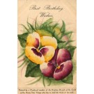 Flower Pansy Birthday Hand-Painted by Teeth