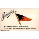 Sports Princeton Banner Embroidered Silk Novelty