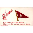 Sports Harvard Banner Embroidered Silk Novelty