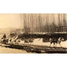 Dog-Drawn Sleigh from Alaska to Washington DC RP