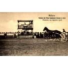 Harness Race Champion Italy Faenza 1908