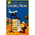 Black Chicory Advert