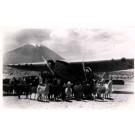 Airplane & Lamas Peru Real Photo