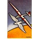 Glider Airplane & Seagull Spanish