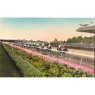 Horse Race Belmont Park Long Island