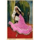 Spanish Ballet Dance Embroidered Silk