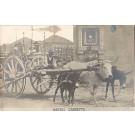Bull Donkeys Carriage Napoli RP