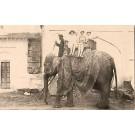 Elephant Cohen India Circus RP