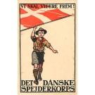 Danish Boy Scouts